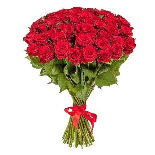 Фото товара 51 красная роза в Покровске