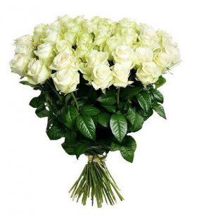 e4af860e7e0fd Доставка цветов Покровск, Донецкая область - Роза Покровска