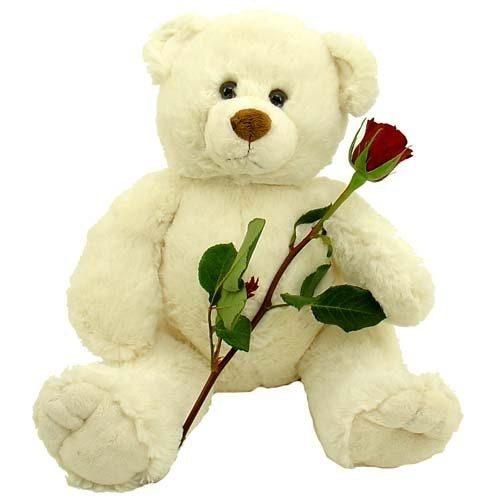 """Фото товара Мишка с букетом роз и """"Рафаэлло"""" в Покровске"""