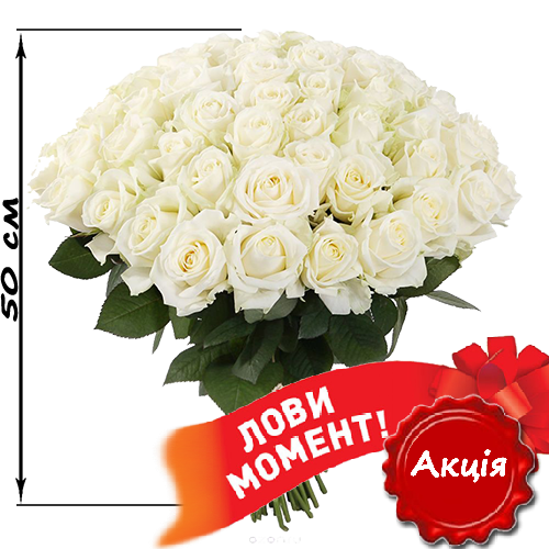 51_white_roses.png