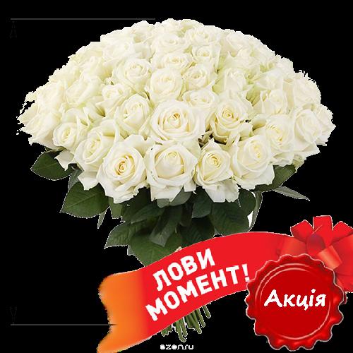 Фото товара 51 белая роза (50 см) в Покровске