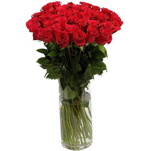 Фото товара Роза импортная красная (поштучно) в Покровске