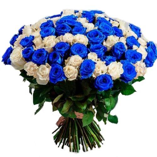 Фото товара 101 белая и синяя роза (крашеная) в Покровске