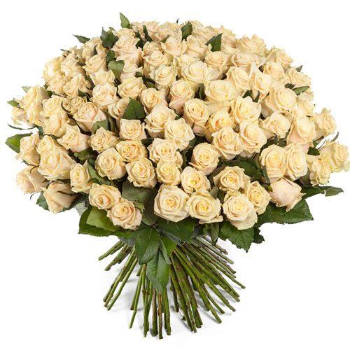 Фото товара 101 кремовая роза в Покровске