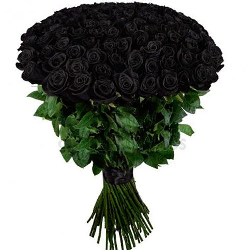 Фото товара 101 чёрная роза в Покровске