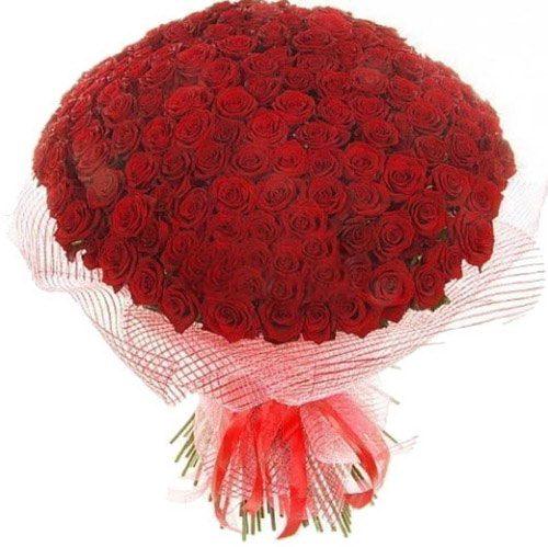 Фото товара 201 красная роза в Покровске