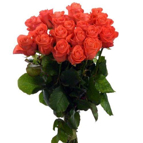 """Фото товара 21 роза """"Вау"""" в Покровске"""