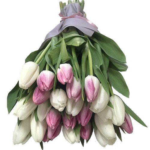 Фото товара 25 бело-розовых тюльпанов в Покровске