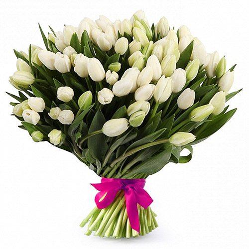 """Фото товара 51 белый тюльпан """"Джульетта"""" в Покровске"""